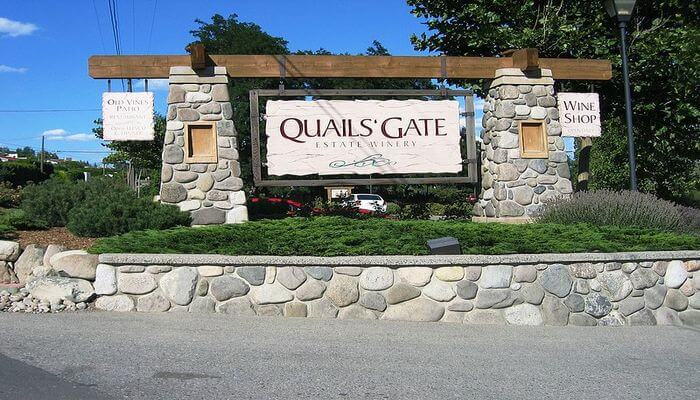 'Gate Winery: Take a Travel Tasting Delectable Wine!