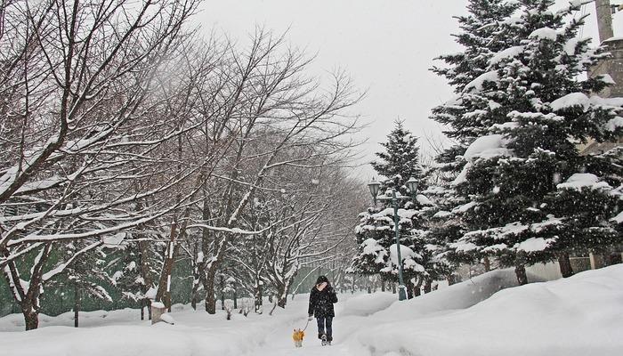 Weather In Calgary In Winter