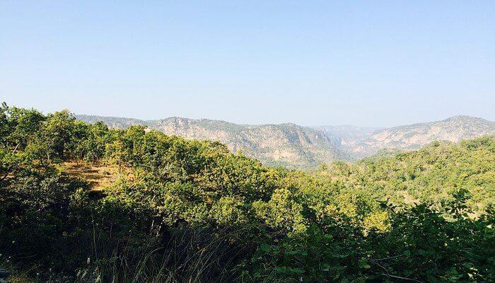 highest point in Madhya Pradesh