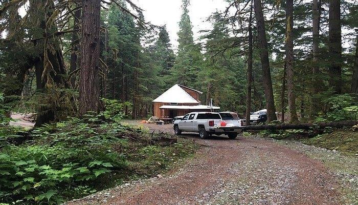 safari at the Great Bear Rainforest