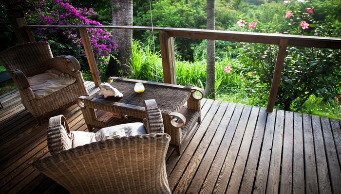 Jungle Lodge & Resorts