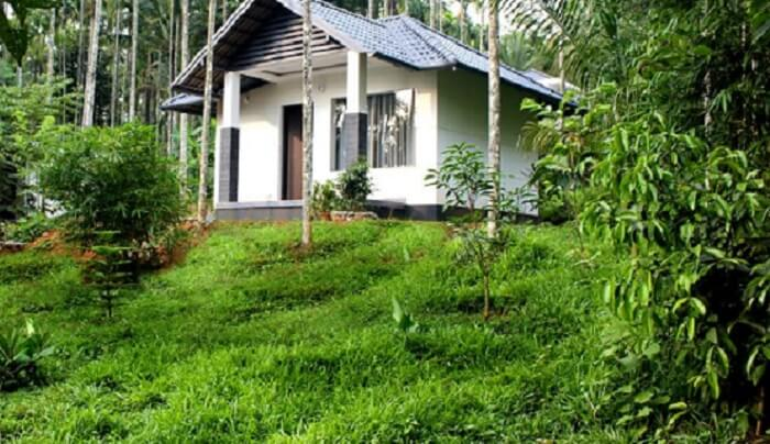 The villa is surrounded by lush green