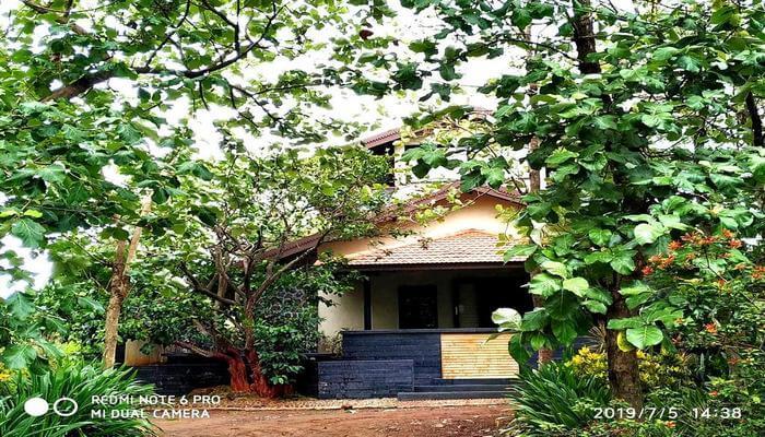 Jungle Safari Resort & Holiday Villas