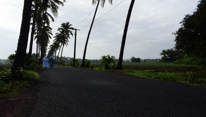 Great road trip to Parra of Goa