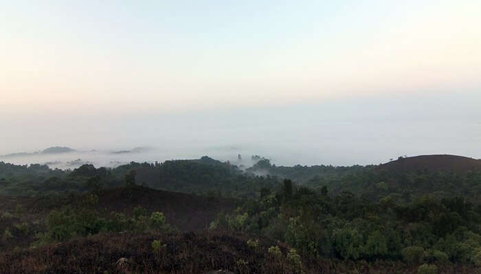 Coorg travel tips
