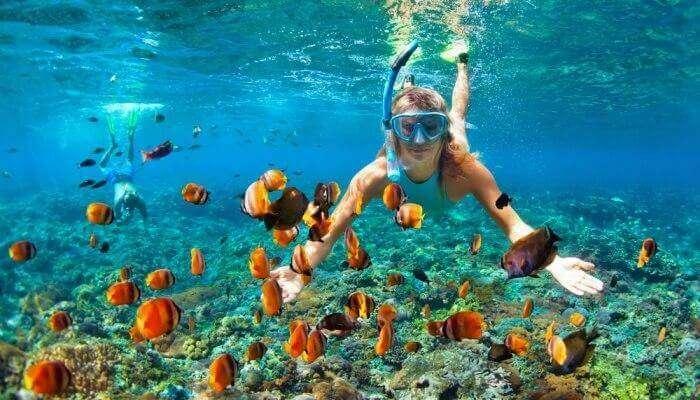 Maldives activities
