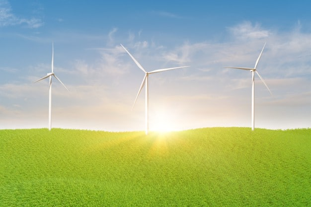 Green Energy Stocks In Focus