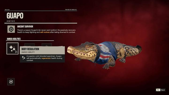 Guapo the crocodile wearing a vest.